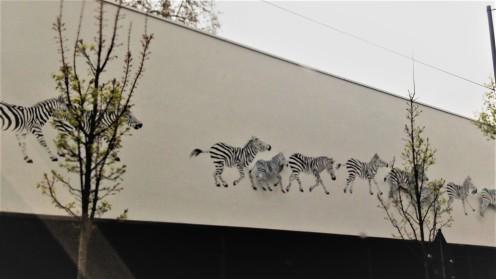 ffm2 zoo